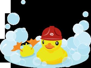 Duck Image Credit: Soraya Nukunkit